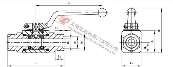 5  180    外螺纹外形尺寸表  型号  d1  d2  d3  l1  l2  l3  l4  l5图片