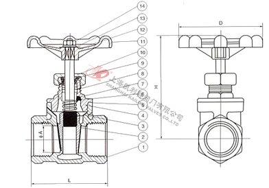 进口不锈钢螺纹闸阀